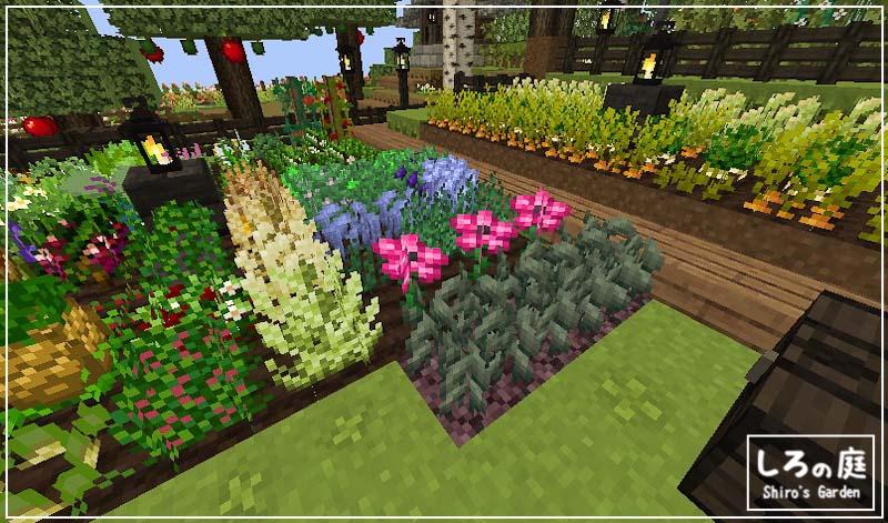 Minecraft,roots2